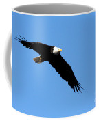 Bald Eagle IIi Coffee Mug