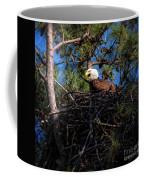 Bald Eagle In The Nest Coffee Mug
