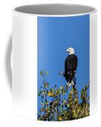 Bald Eagle In The Tree Coffee Mug
