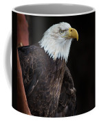 Bald Eagle Intensity Coffee Mug