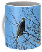 Bald Eagle Coffee Mug