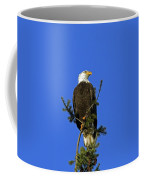 Bald Eagle On Blue Coffee Mug