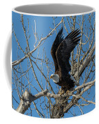 Bald Eagle Pushes Off For Launch Coffee Mug