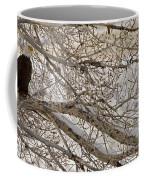 Bald Eagle-signed-#4879 Coffee Mug
