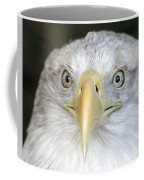 Bald Eagle Up Close Coffee Mug