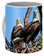 Bald Eagles In Nest Coffee Mug