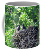 Bald Eaglet's 5 Wks 2 Coffee Mug