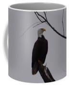 Bald Eagle 2 Coffee Mug