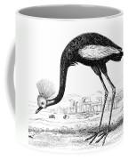 Balearic Crane Coffee Mug
