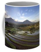 Bali Terrace Rice Field Coffee Mug