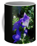 Baloon Flower Coffee Mug