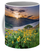 Balsamroot At Sunrise Coffee Mug