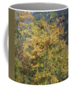 Bamboo Forest In The Fall Coffee Mug