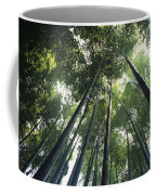 Bamboo Forest Coffee Mug