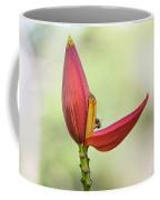Banana Flower Bud  Coffee Mug