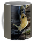 Banana Slug Closeup Coffee Mug