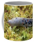 Banana Slug Closeup In Moss Coffee Mug