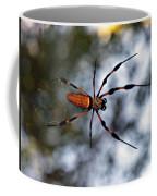 Banana Spider   3 Coffee Mug