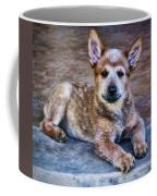 Bandit  Coffee Mug by Saija  Lehtonen
