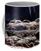 Bandon 11 Coffee Mug