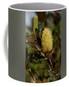 Banksia Syd01 Coffee Mug