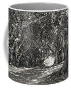 Banyan Street 3 Coffee Mug