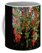 Barberries Coffee Mug