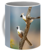 Bare-faced Go-away-birds Corythaixoides Coffee Mug