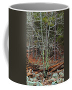 Bare Tree And Boulders In Mark Twain Forest Coffee Mug