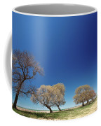 Bare Trees Along Shore Of Lake Manitoba Coffee Mug