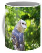 Barn Owl Looking Skyward Coffee Mug