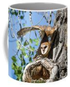Barn Owl Owlet Stretches High Coffee Mug