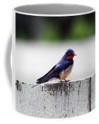 Barn Swallow At Fort Larned Coffee Mug