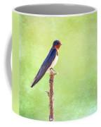 Barn Swallow, Hirundo Rustica Coffee Mug