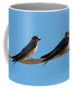 Barn Swallows  Coffee Mug