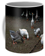 Barn Yard Quackers Coffee Mug