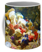 Barnacles And Sea Urchin Among Invertebrates In Monterey Aquarium-california  Coffee Mug