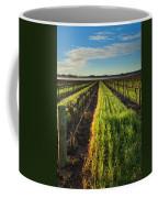 Barossa Vineyard Morning Coffee Mug