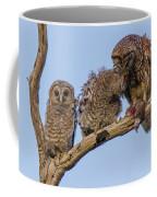 Barred Owl Family Coffee Mug