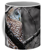 Barred Owl Hungry  Coffee Mug