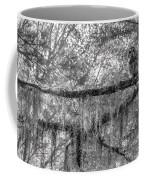 Barred Owl In Monochrome Coffee Mug