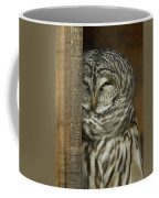 Barred Owl Coffee Mug