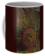 Barrel Cactus Top View Coffee Mug
