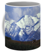 Barren-ground Caribou Rangifer Tarandus Coffee Mug by Nick Norman