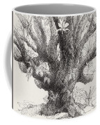 Barringtonia Tree Coffee Mug