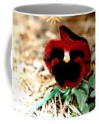 Bashful Pansy Coffee Mug