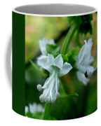 Basil Bloom Coffee Mug