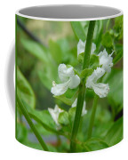Basil Blossom Coffee Mug