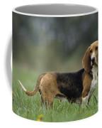 Basset Art�sien Normand Coffee Mug
