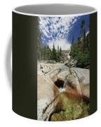 Bassi Falls...nature Nurtures Coffee Mug